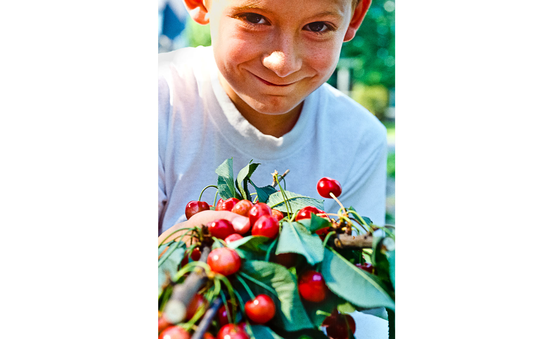 Kid-with-Cherries