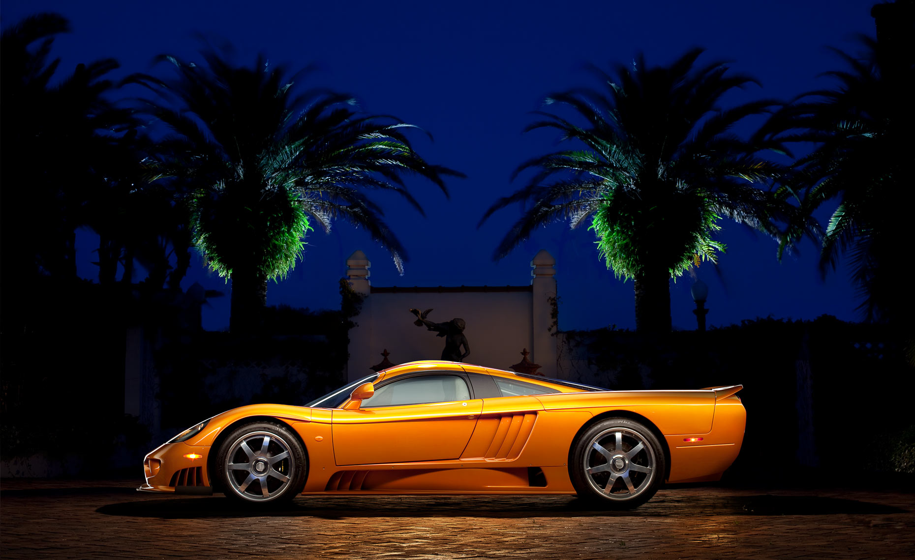 Saleen-and-palms